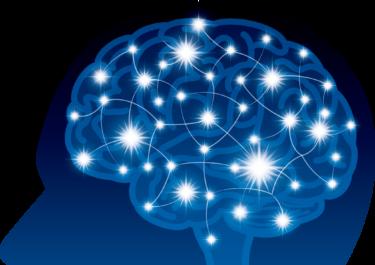 【ゴルフトレーニングの科学的根拠No.57】プロゴルファーの脳活動