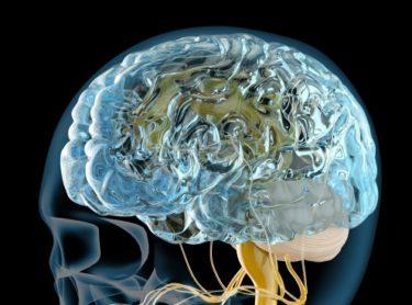 【ゴルフトレーニングの科学的根拠No.92】ゴルフで起こる脳卒中のリスク