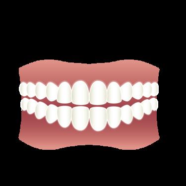 【ゴルフトレーニングの科学的根拠No.76】歯を噛み締める効果