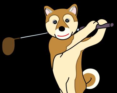 【ゴルフトレーニングの科学的根拠No.64】左股関節と体幹の協調運動
